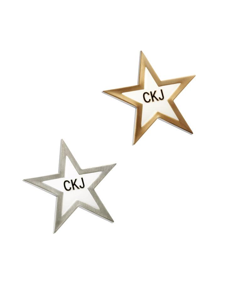 CALVIN KLEIN GOLD ANTIQUE STARS PINS SET