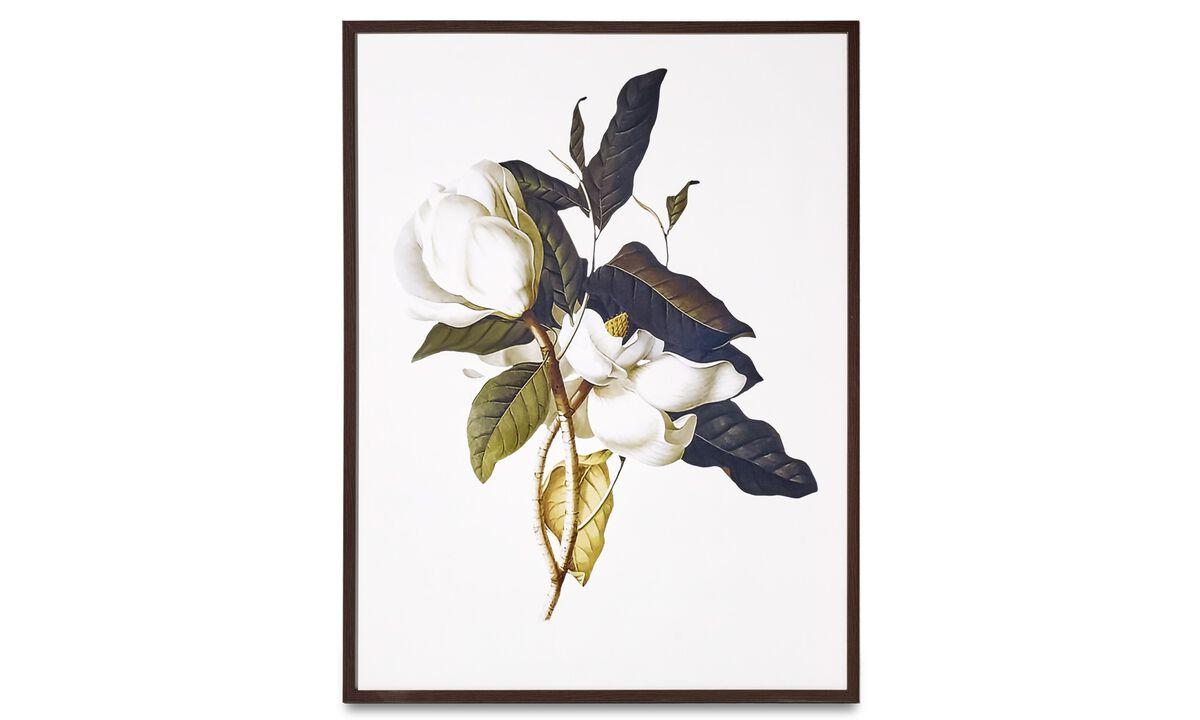 Galeria - Quadro em moldura Magnolia - Cartão